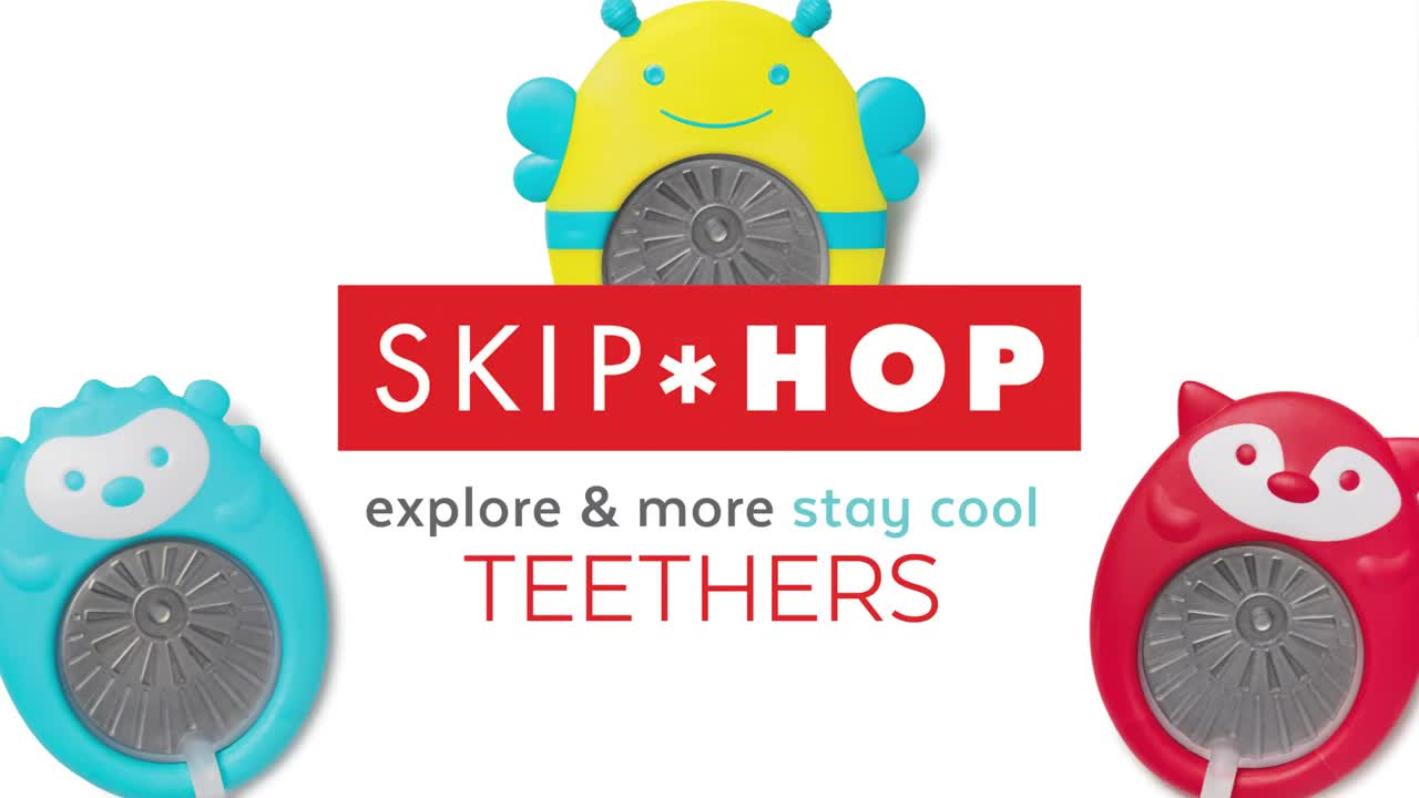 Image result for skip hop stay cool teether